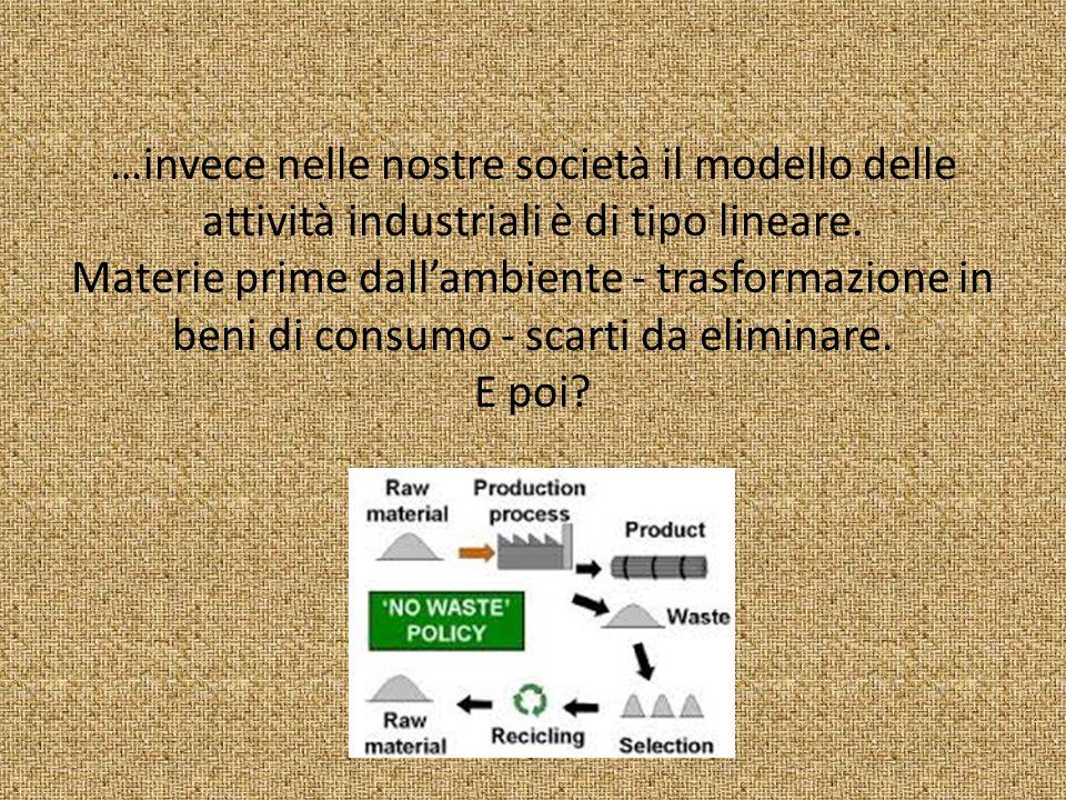 …invece nelle nostre società il modello delle attività industriali è di tipo lineare.