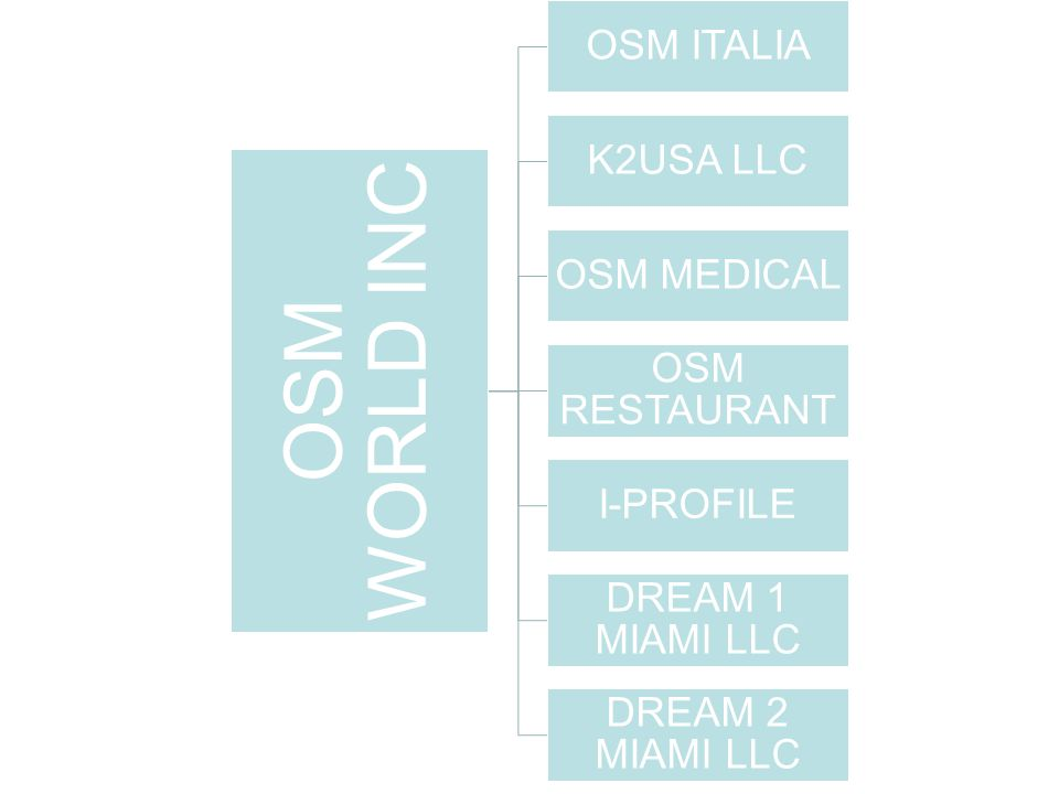 OSM WORLD INC OSM ITALIA K2USA LLC OSM MEDICAL OSM RESTAURANT I-PROFILE DREAM 1 MIAMI LLC DREAM 2 MIAMI LLC
