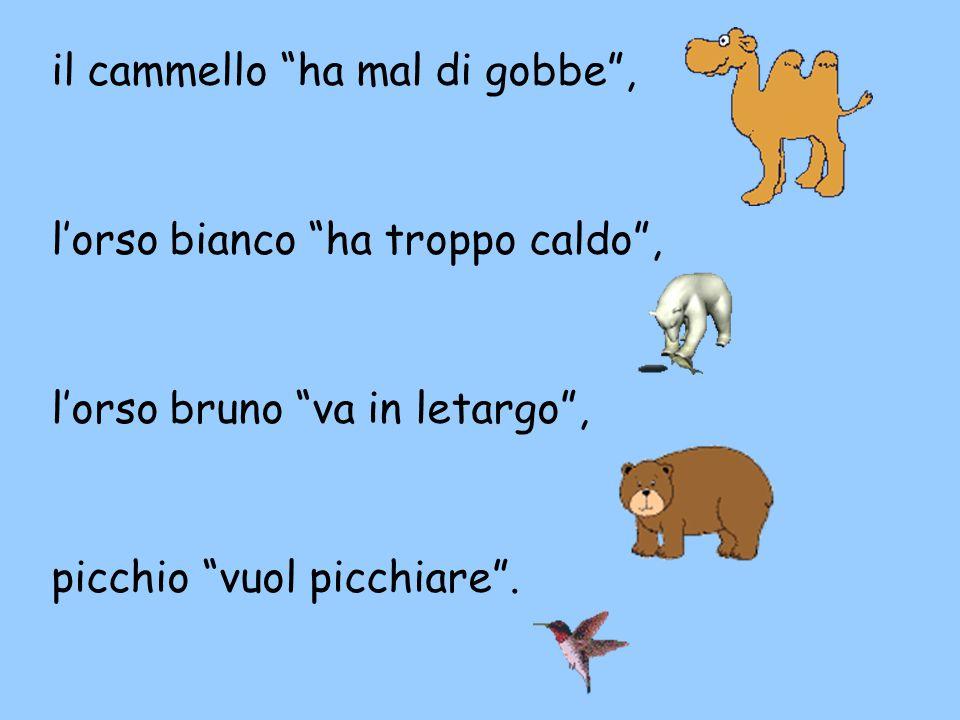 """il cammello """"ha mal di gobbe"""", l'orso bianco """"ha troppo caldo"""", l'orso bruno """"va in letargo"""", picchio """"vuol picchiare""""."""