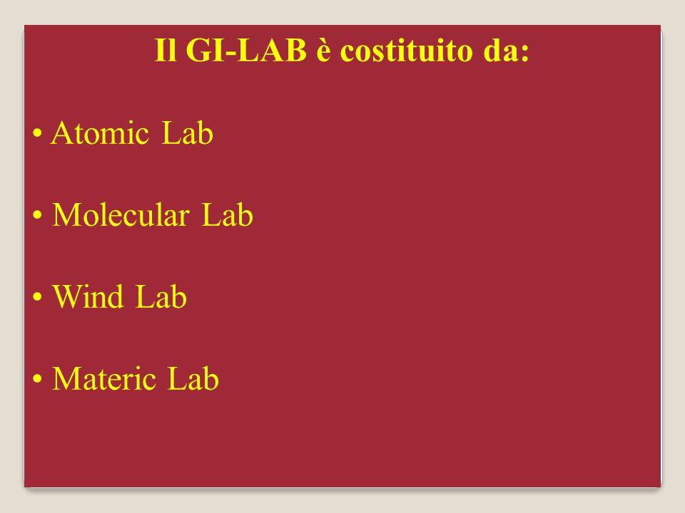 Dr. Marco Coppelli12 Il GI-LAB è costituito da: Atomic Lab Molecular Lab Wind Lab Materic Lab