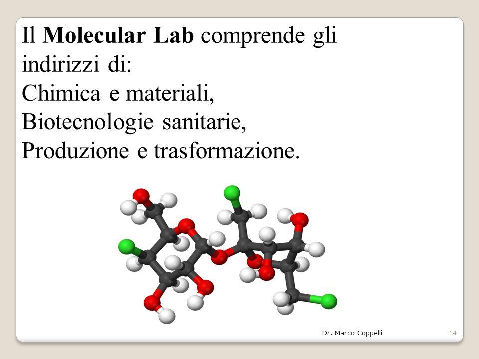 Dr. Marco Coppelli14 Il Molecular Lab comprende gli indirizzi di: Chimica e materiali, Biotecnologie sanitarie, Produzione e trasformazione.