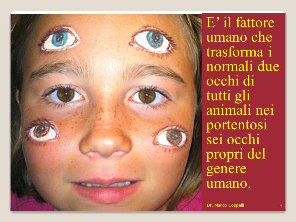 E' il fattore umano che trasforma i normali due occhi di tutti gli animali nei portentosi sei occhi propri del genere umano.