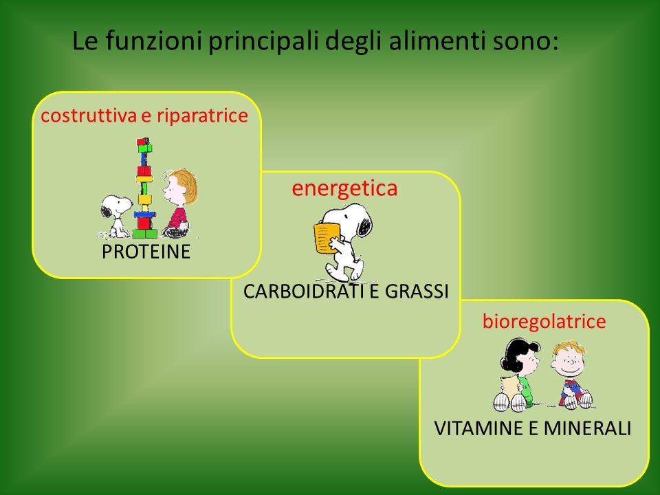 Le funzioni principali degli alimenti sono: costruttiva e riparatrice energetica bioregolatrice CARBOIDRATI E GRASSI PROTEINE VITAMINE E MINERALI