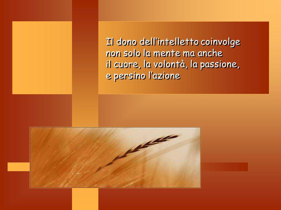 Intelletto: Intelletto: E' la risposta al bisogno di conoscenza e verità. Ci fa comprendere in maniera chiara quello che la luce della fede ci fa comp