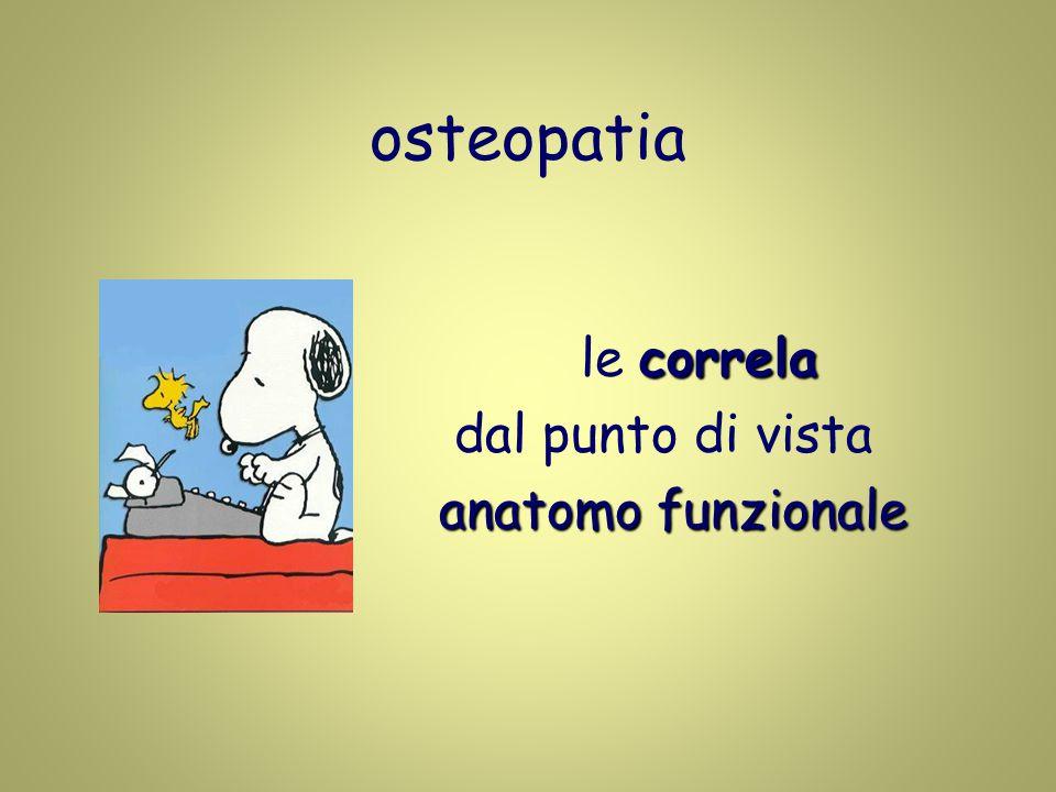 correla le correla dal punto di vista anatomo funzionale osteopatia
