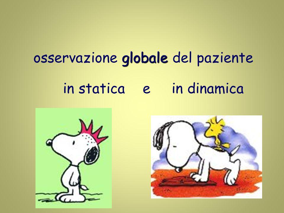 globale osservazione globale del paziente in staticae in dinamica