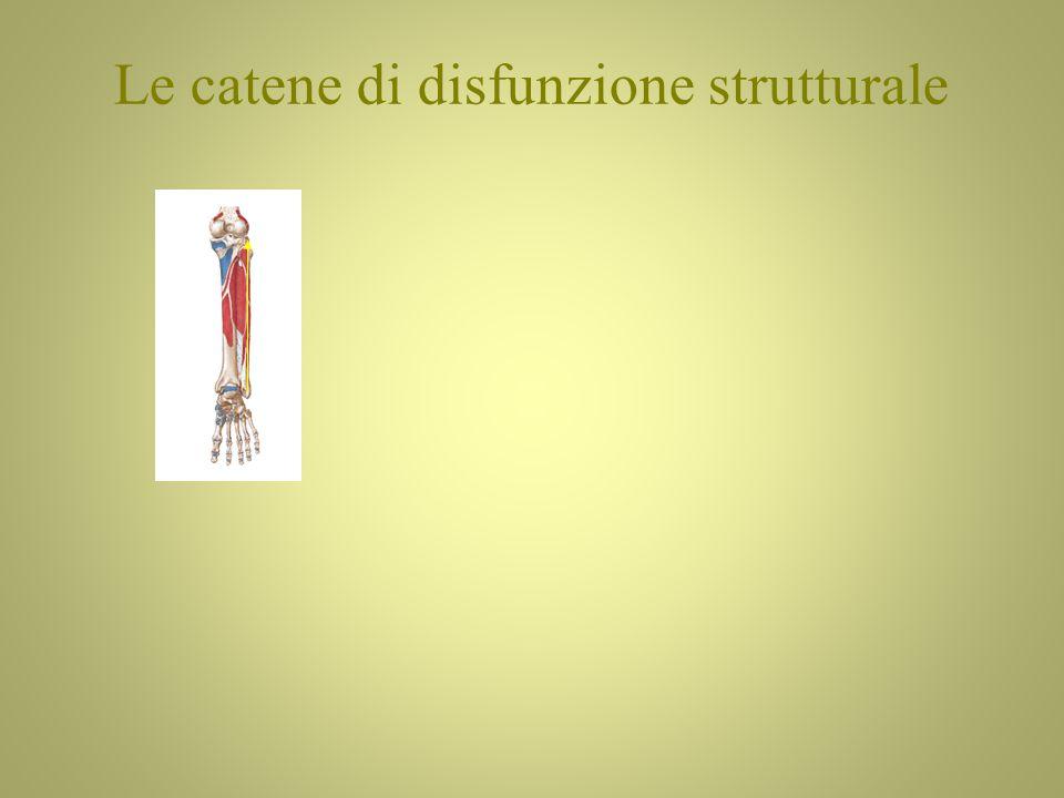 Le catene di disfunzione strutturale