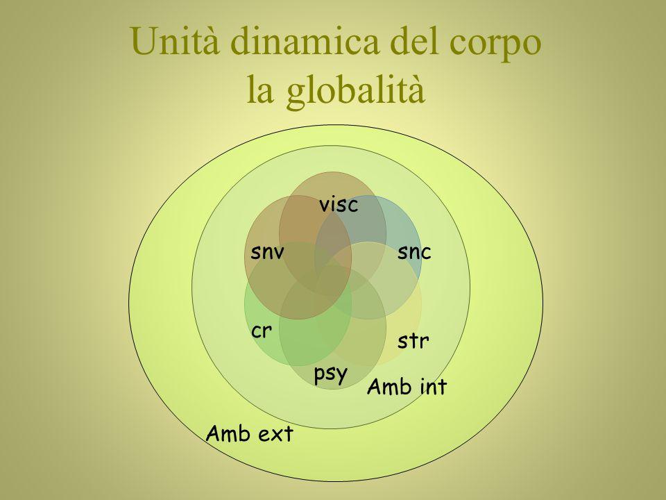Unità dinamica del corpo la globalità snvsnc visc cr Amb int Amb ext psy str