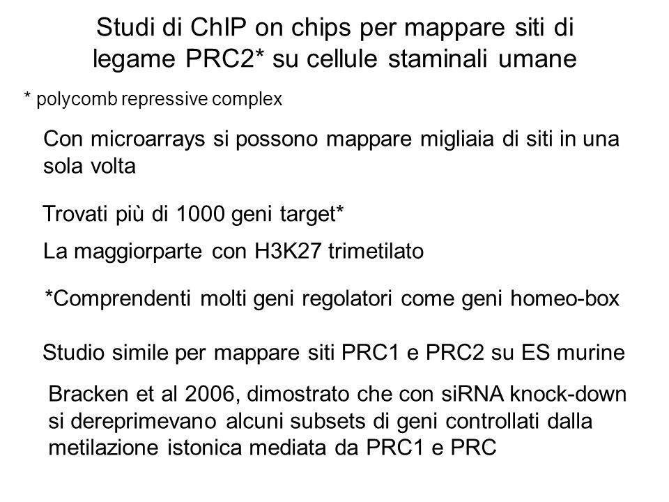 Studi di ChIP on chips per mappare siti di legame PRC2* su cellule staminali umane Con microarrays si possono mappare migliaia di siti in una sola vol