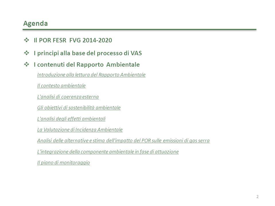 13 Il processo di VAS I contenuti del Rapporto Ambientale: contesto ambientale Il contesto ambientale