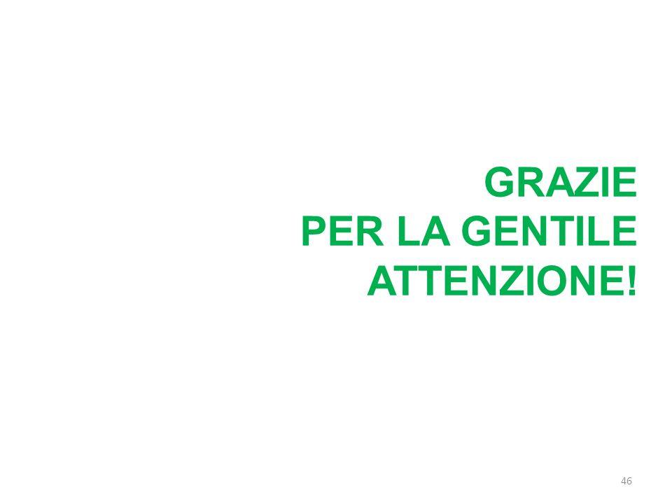 GRAZIE PER LA GENTILE ATTENZIONE! 46