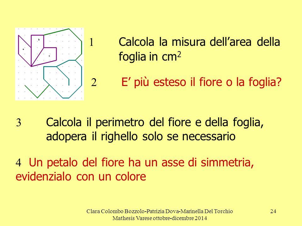 Clara Colombo Bozzolo-Patrizia Dova-Marinella Del Torchio Mathesis Varese ottobre-dicembre 2014 24  Calcola la misura dell'area della fogliain cm 2 