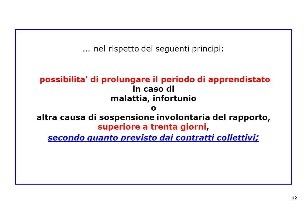 … nel rispetto dei seguenti principi: possibilita' di prolungare il periodo di apprendistato in caso di malattia, infortunio o altra causa di sospensi