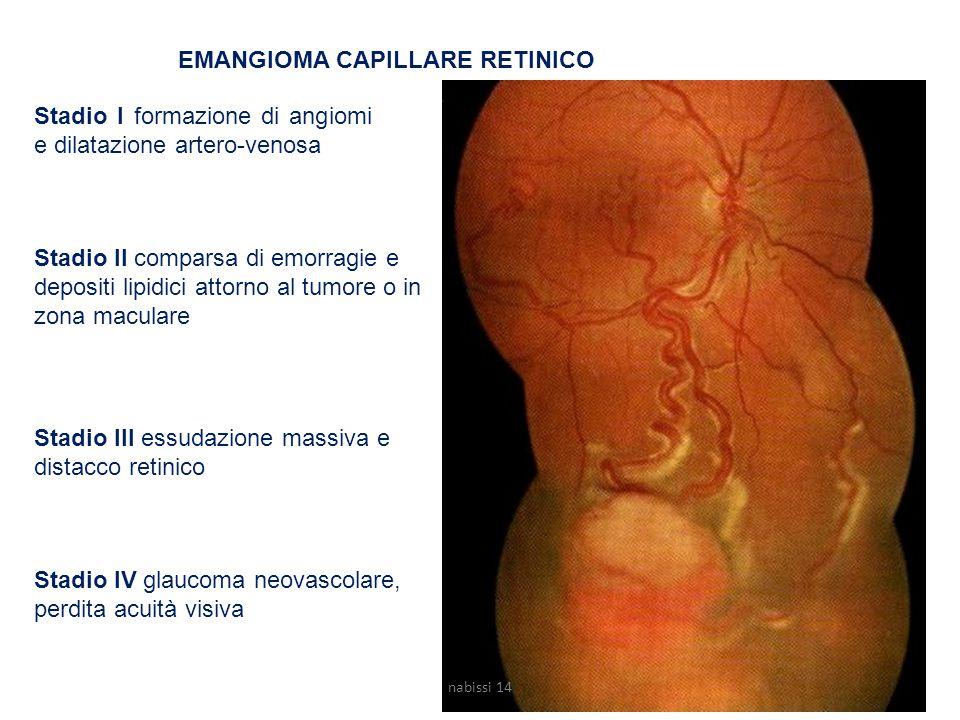 EMANGIOMA CAPILLARE RETINICO Stadio I formazione di angiomi e dilatazione artero-venosa Stadio II comparsa di emorragie e depositi lipidici attorno al