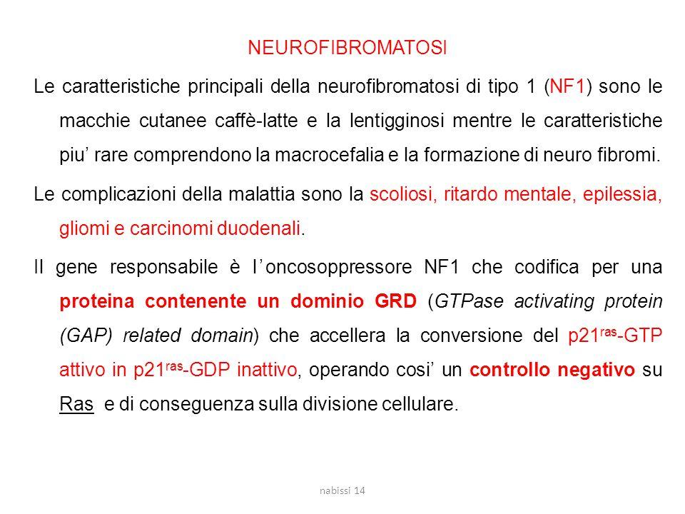 NEUROFIBROMATOSI Le caratteristiche principali della neurofibromatosi di tipo 1 (NF1) sono le macchie cutanee caffè-latte e la lentigginosi mentre le