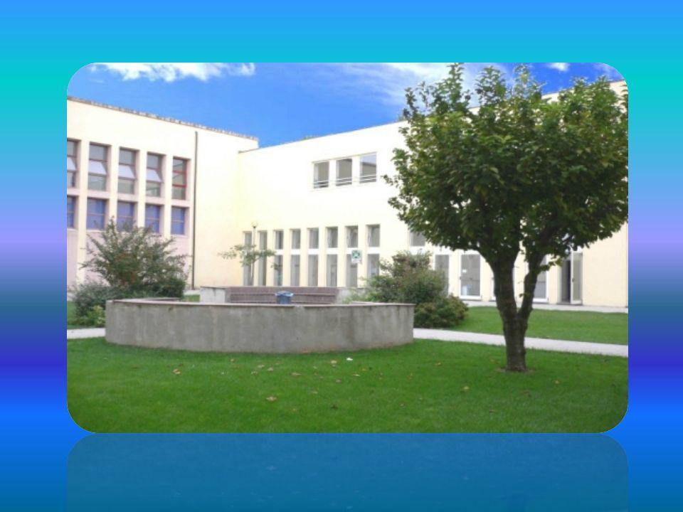 L'ISTITUTO L'istituto ha sede a Lonato del Garda in via Galileo Galilei 1, vicino alle Scuole Medie. E' sorto nel 1967 come sezione staccata dell'Isti