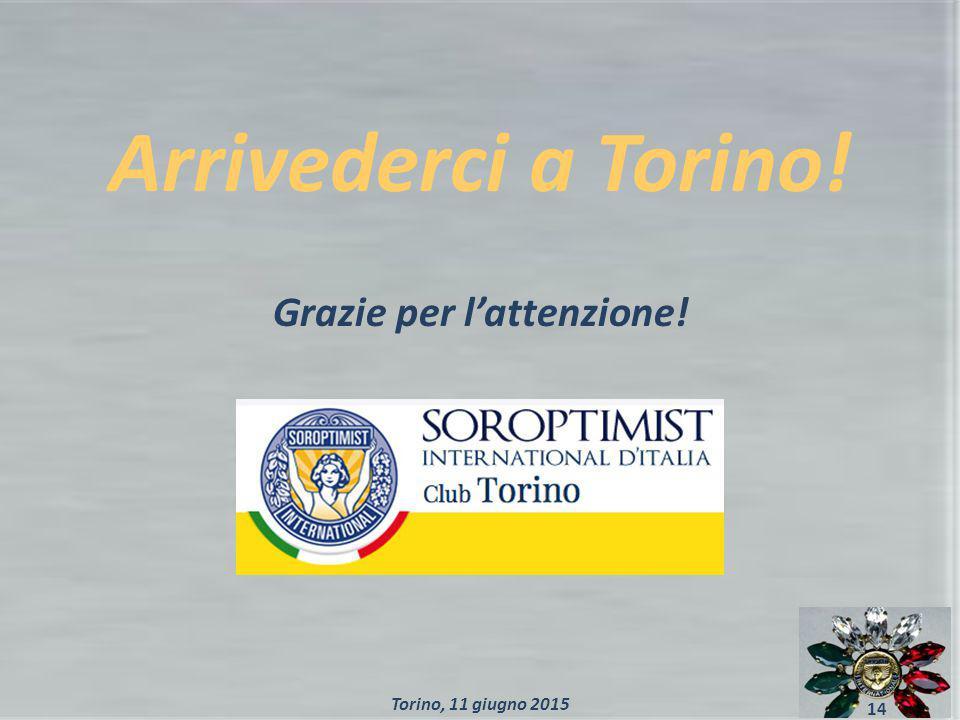Arrivederci a Torino! Grazie per l'attenzione! 14 Torino, 11 giugno 2015