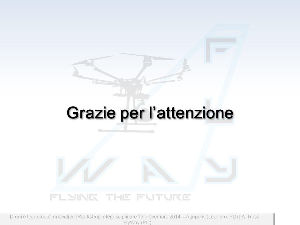 Grazie per l'attenzione Droni e tecnologie innovative | Workshop interdisciplinare 13 novembre 2014 - Agripolis (Legnaro, PD) | A.