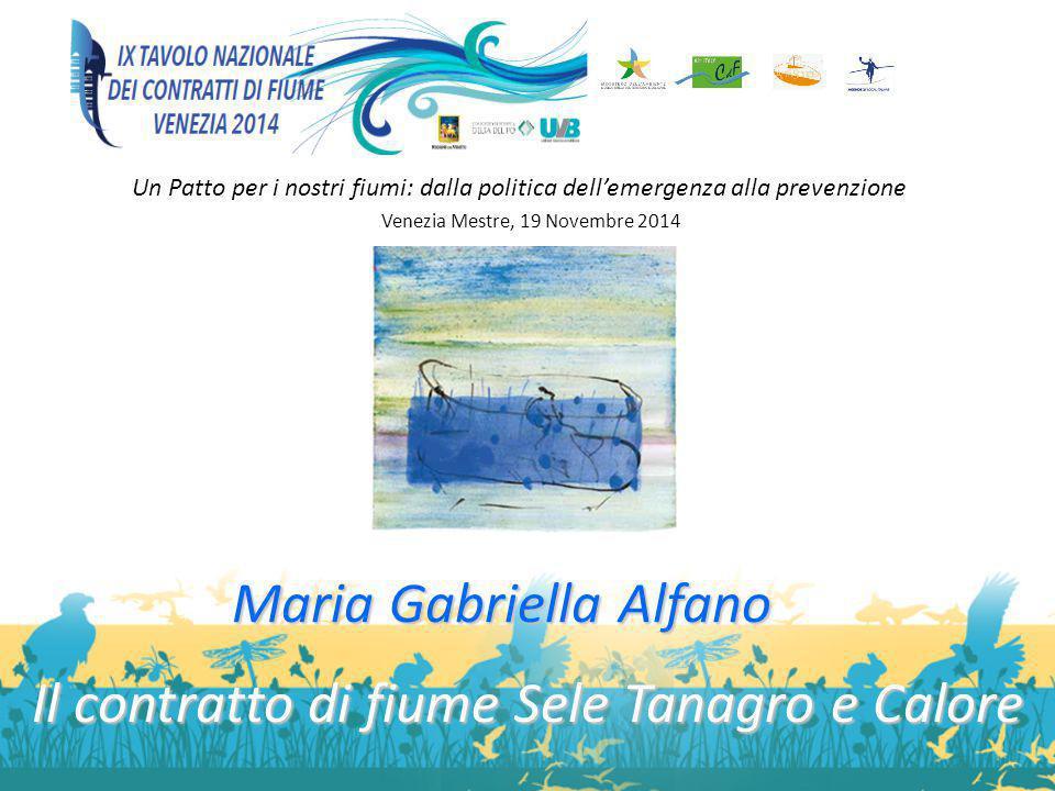 Un Patto per i nostri fiumi: dalla politica dell'emergenza alla prevenzione Venezia Mestre, 19 Novembre 2014 Maria Gabriella Alfano Il contratto di fi