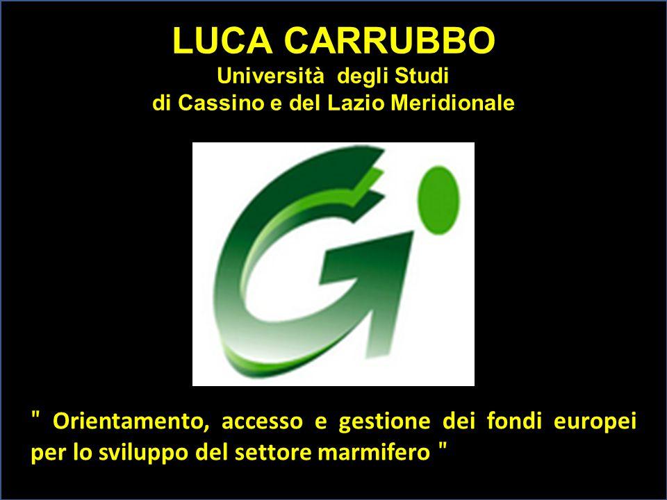 LUCA CARRUBBO Università degli Studi di Cassino e del Lazio Meridionale ʺ Orientamento, accesso e gestione dei fondi europei per lo sviluppo del setto
