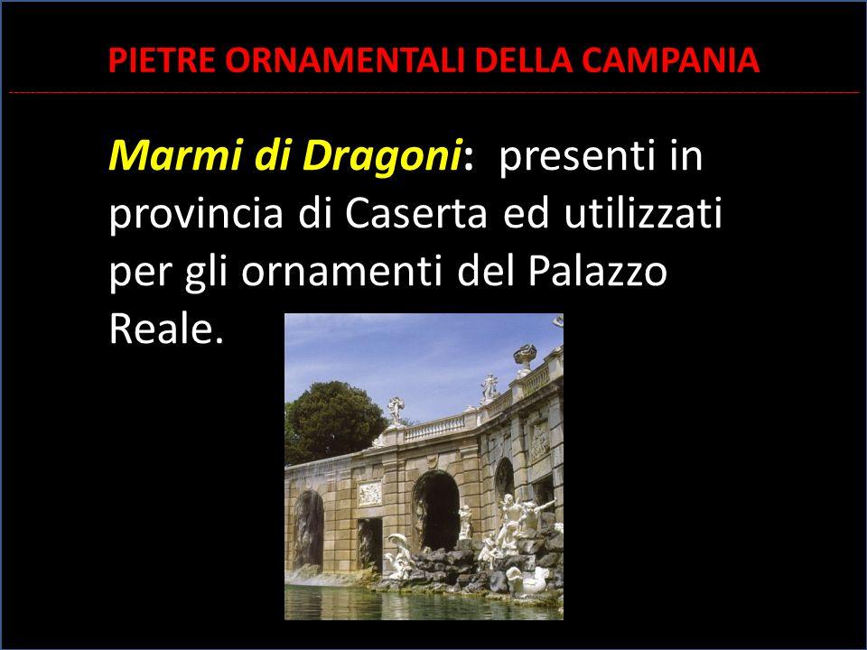 Marmi di Dragoni: presenti in provincia di Caserta ed utilizzati per gli ornamenti del Palazzo Reale. di Caserta PIETRE ORNAMENTALI DELLA CAMPANIA ___