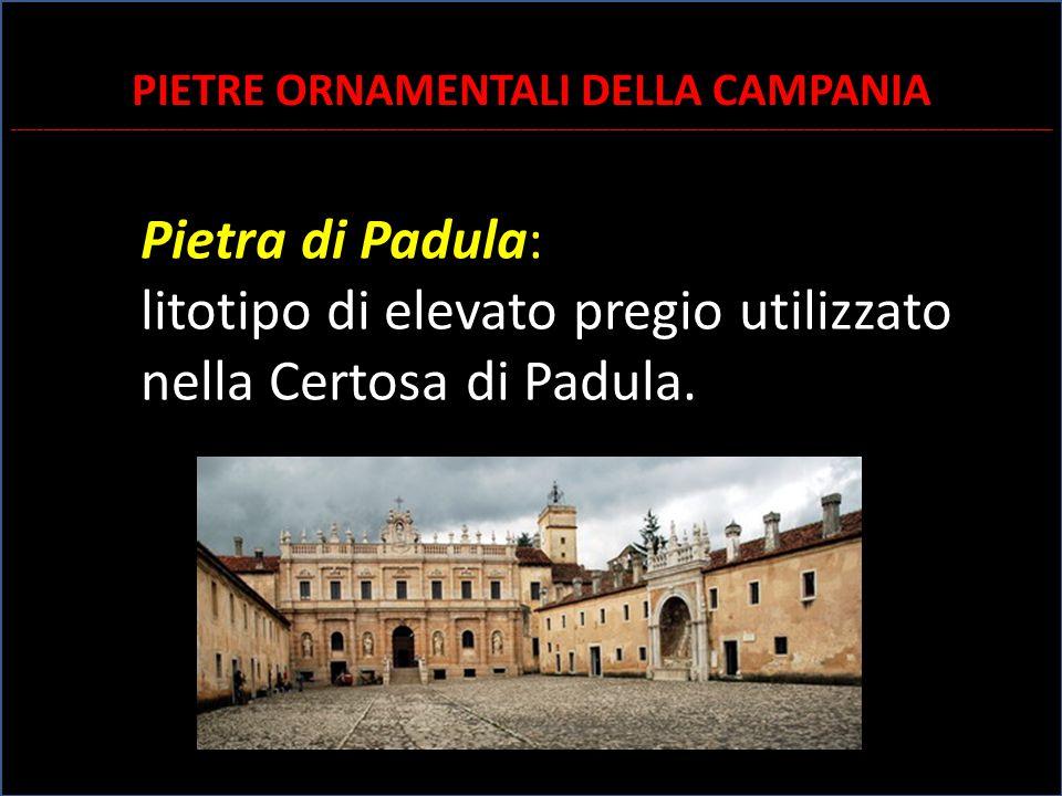 Pietra di Padula: litotipo di elevato pregio utilizzato nella Certosa di Padula. PIETRE ORNAMENTALI DELLA CAMPANIA ___________________________________