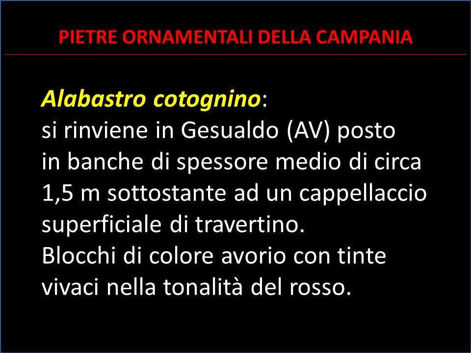 Alabastro cotognino: si rinviene in Gesualdo (AV) posto in banche di spessore medio di circa 1,5 m sottostante ad un cappellaccio superficiale di trav