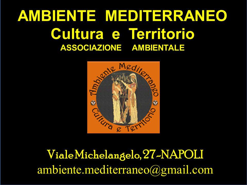 AMBIENTE MEDITERRANEO Cultura e Territorio ASSOCIAZIONE AMBIENTALE Viale Michelangelo, 27-NAPOLI ambiente.mediterraneo@gmail.com