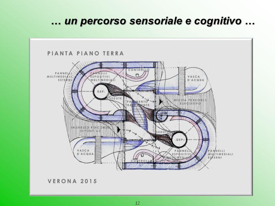 … un percorso sensoriale e cognitivo … … un percorso sensoriale e cognitivo … 12