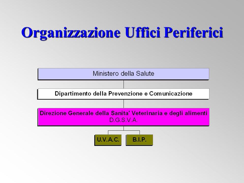 Organizzazione Uffici Periferici