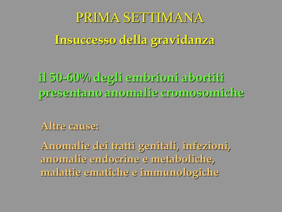 PRIMA SETTIMANA Insuccesso della gravidanza il 50-60% degli embrioni abortiti presentano anomalie cromosomiche Altre cause: Anomalie dei tratti genita