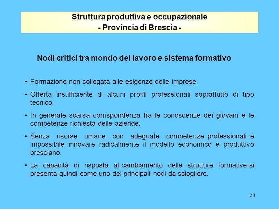 23 Struttura produttiva e occupazionale - Provincia di Brescia - Nodi critici tra mondo del lavoro e sistema formativo Formazione non collegata alle esigenze delle imprese.