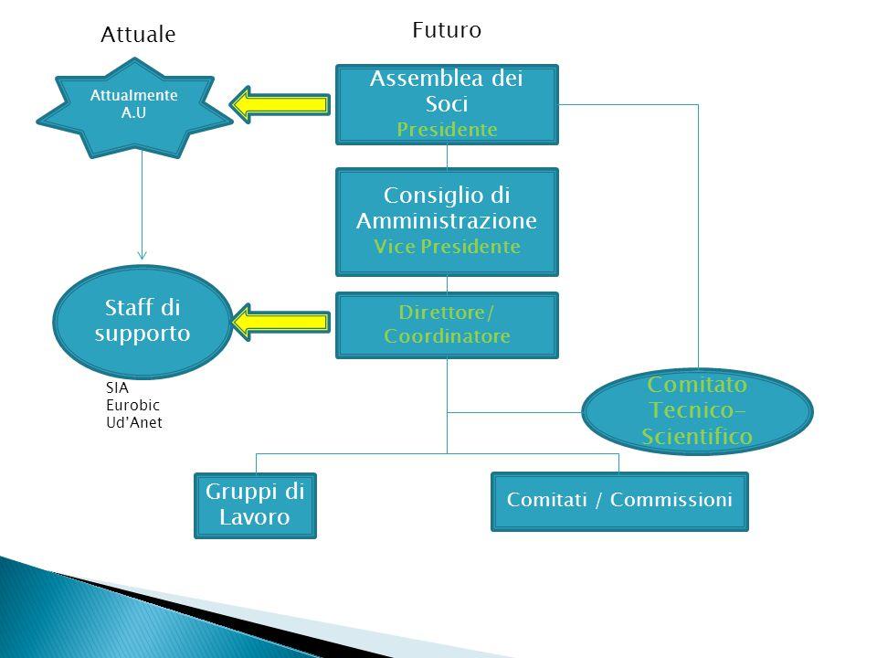 Assemblea dei Soci Presidente Consiglio di Amministrazione Vice Presidente Direttore/ Coordinatore Comitato Tecnico- Scientifico Gruppi di Lavoro Comi