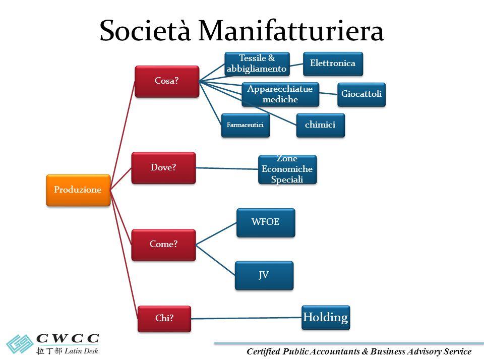 Certified Public Accountants & Business Advisory Service Società Manifatturiera ProduzioneCosa.