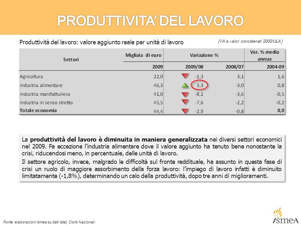 La produttività del lavoro è diminuita in maniera generalizzata nei diversi settori economici nel 2009.