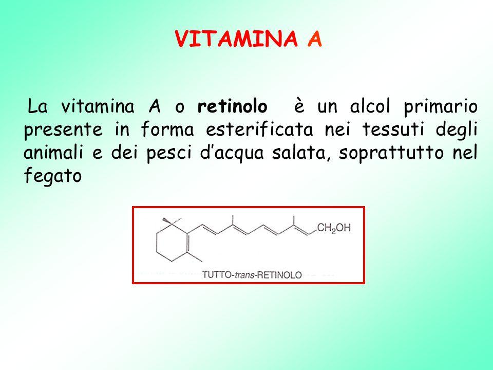 VITAMINA A La vitamina A o retinolo è un alcol primario presente in forma esterificata nei tessuti degli animali e dei pesci d'acqua salata, soprattutto nel fegato