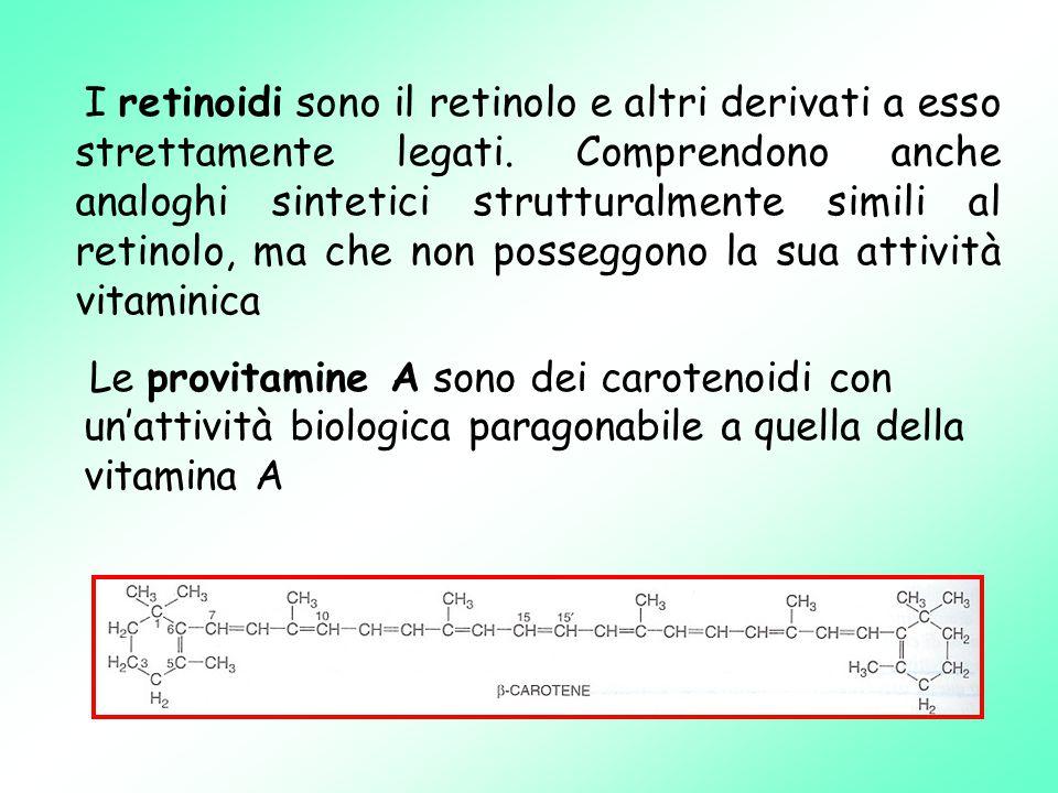 I retinoidi sono il retinolo e altri derivati a esso strettamente legati.