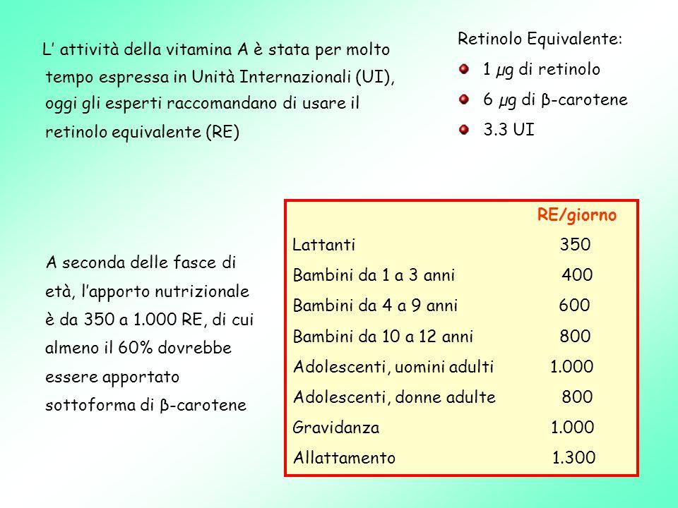 L' attività della vitamina A è stata per molto tempo espressa in Unità Internazionali (UI), oggi gli esperti raccomandano di usare il retinolo equivalente (RE) Retinolo Equivalente: 1 µg di retinolo 6 µg di β-carotene 3.3 UI RE/giorno Lattanti 350 Bambini da 1 a 3 anni 400 Bambini da 4 a 9 anni 600 Bambini da 10 a 12 anni 800 Adolescenti, uomini adulti 1.000 Adolescenti, donne adulte 800 Gravidanza 1.000 Allattamento 1.300 A seconda delle fasce di età, l'apporto nutrizionale è da 350 a 1.000 RE, di cui almeno il 60% dovrebbe essere apportato sottoforma di β-carotene