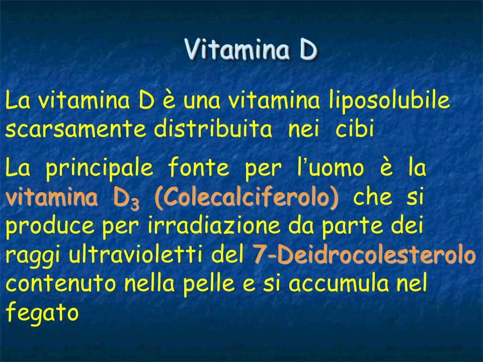 vitamina D 2 Calciferolo In natura oltre alla vitamina D 3 esiste la vitamina D 2 o Calciferolo che si forma nelle piante in seguito all ' irradiazione da parte dei raggi solari vitamina D 3 La vitamina D 3 si trova anche nel fegato di merluzzo e nell ' olio di pesce