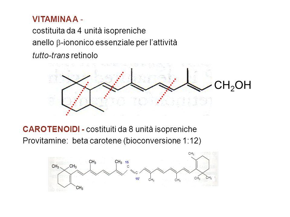 VITAMINA A - costituita da 4 unità isopreniche anello  -iononico essenziale per l'attività tutto-trans retinolo CAROTENOIDI - costituiti da 8 unità isopreniche Provitamine: beta carotene (bioconversione 1:12) CH 2 OH C C CH 3 15 15'