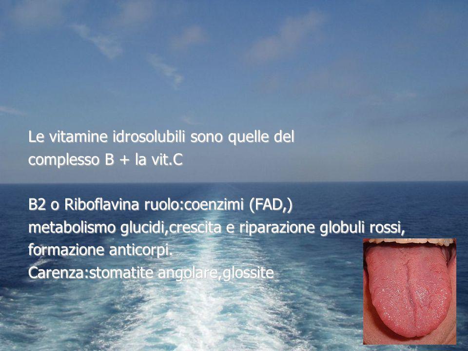 Le vitamine idrosolubili sono quelle del complesso B + la vit.C B2 o Riboflavina ruolo:coenzimi (FAD,) metabolismo glucidi,crescita e riparazione glob