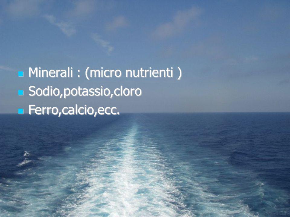 Minerali : (micro nutrienti ) Minerali : (micro nutrienti ) Sodio,potassio,cloro Sodio,potassio,cloro Ferro,calcio,ecc. Ferro,calcio,ecc.