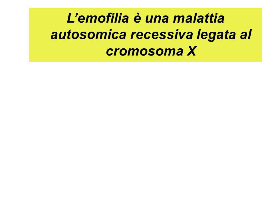 L'emofilia è una malattia autosomica recessiva legata al cromosoma X