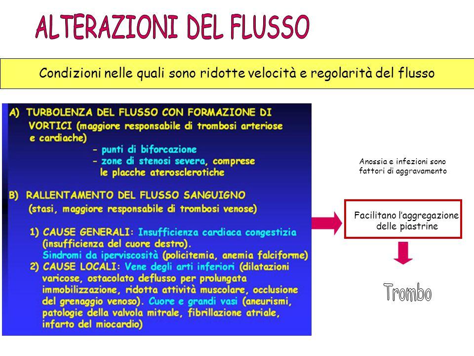 TROMBO BIANCO Condizioni nelle quali sono ridotte velocità e regolarità del flusso Facilitano l'aggregazione delle piastrine Anossia e infezioni sono