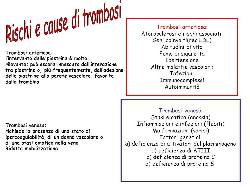 Trombosi arteriosa: Aterosclerosi e rischi associati: Geni coinvolti(rec LDL) Abitudini di vita Fumo di sigaretta Ipertensione Altre malattie vascolar