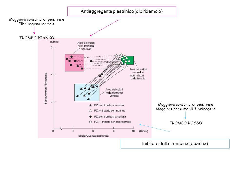 Maggiore consumo di piastrine Fibrinogeno normale TROMBO BIANCO Maggiore consumo di piastrine Maggiore consumo di fibrinogeno TROMBO ROSSO Antiaggrega