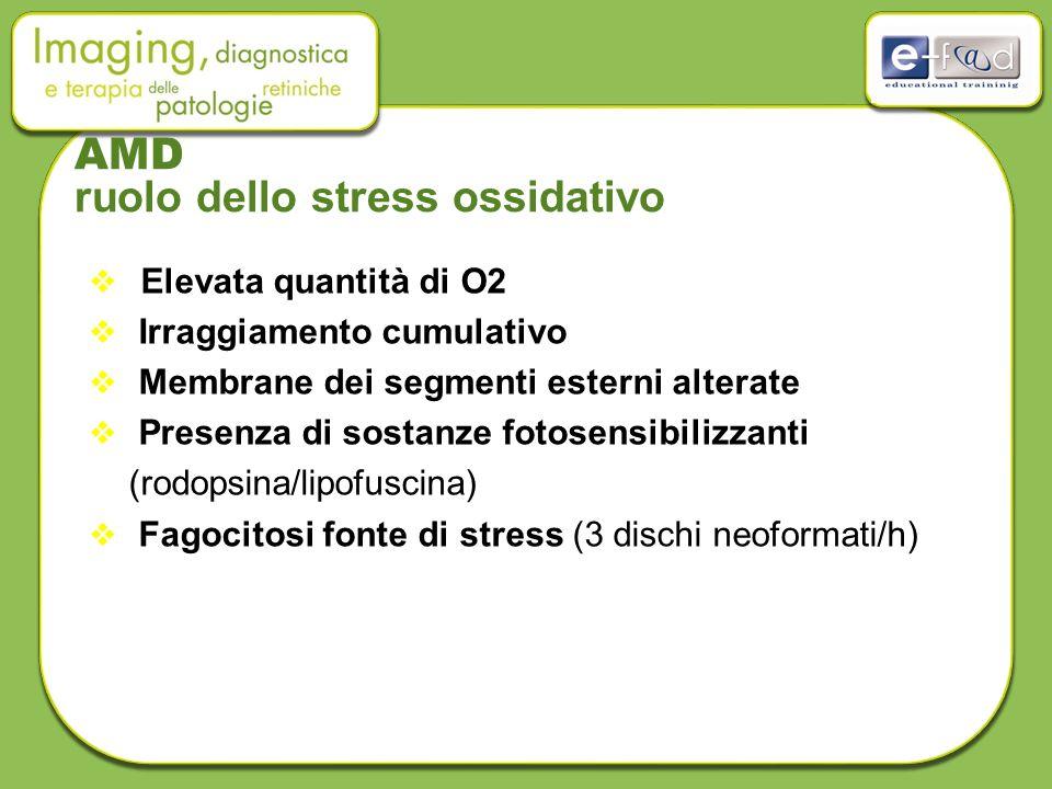 AMD ruolo dello stress ossidativo  Elevata quantità di O2  Irraggiamento cumulativo  Membrane dei segmenti esterni alterate  Presenza di sostanze fotosensibilizzanti (rodopsina/lipofuscina)  Fagocitosi fonte di stress (3 dischi neoformati/h)