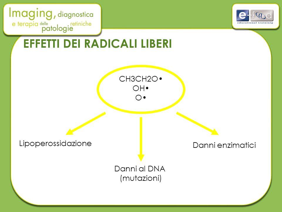EFFETTI DEI RADICALI LIBERI CH3CH2O OH O Danni al DNA (mutazioni) Danni enzimatici Lipoperossidazione
