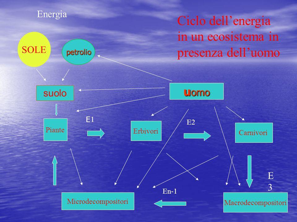 SOLE Energia Piante Erbivori 1 Carnivori E2 Macrodecompositori Microdecompositori E3E3 En-1 Ciclo dell'energia in un ecosistema in presenza dell'uomo