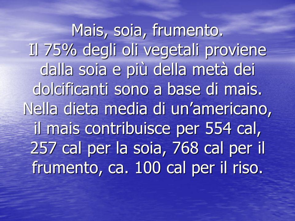 Mais, soia, frumento. Il 75% degli oli vegetali proviene dalla soia e più della metà dei dolcificanti sono a base di mais. Nella dieta media di un'ame